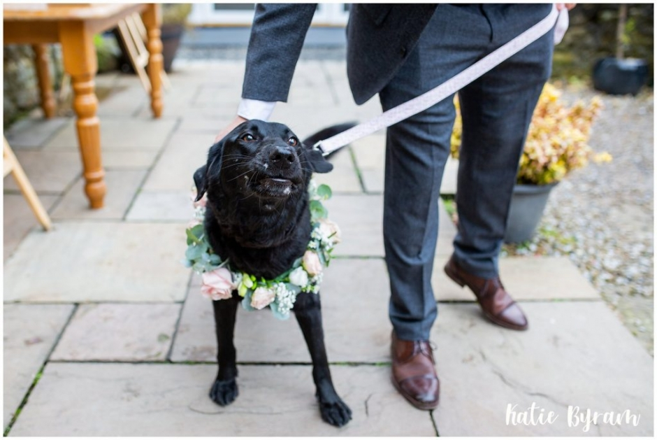 dog bridesmaid, high house farm brewery wedding, dogs at weddings, yorkshire wedding venue, katie byram photography, huddersfield wedding photographer, northumberland wedding venue, outside wedding venue ,